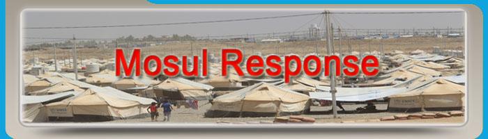 Mosul Response