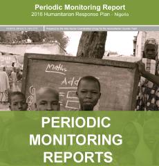 Periodic Monitoring Report
