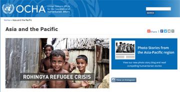 Screenshot of the OCHA ROAP website