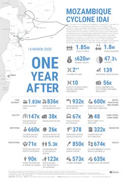 Mozambique Cyclone Idai: One year after
