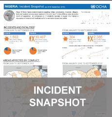 Incident Snapshot
