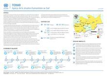 Tchad - Aperçu de la situation humanitaire au Sud (juin 2020)