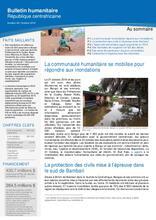 RCA: OCHA Bulletin humanitaire #41 (jan 2019) [CLONED]