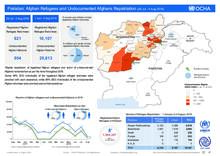 Pakistan: Afghan Refugees and Undocumented Afghan Repatriation 29 Jul - 4 Aug 2018)