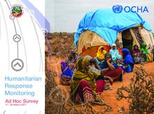 Humanitarian Response Monitoring Ad Hoc Survey, 17 - 28 March 2017