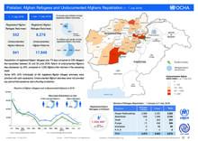 Pakistan: Afghan Refugees and Undocumented Afghan Repatriation (1 - 7 July 2018)