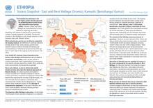 Ethiopia: Access Snapshot - East and West Wellega (Oromia), Kamashi (Benishangul Gumuz) As of 28 February 2020